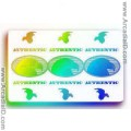 Nine Eagles ID Card Hologram Overlay